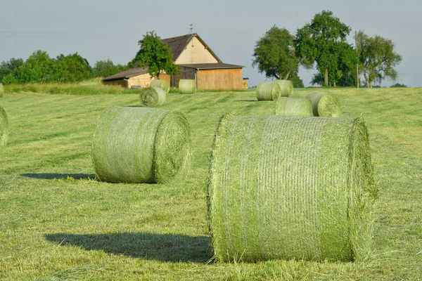 Poster Hay Bales Straw Agriculture Feld Wiese Natur