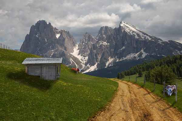 Poster Alm Alpine Cow Collage Wiese Hut Berge Download