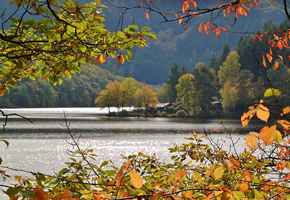 Poster Fluss Waters Boat Haus Beech Leaves Herbst