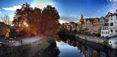 Poster Herbst Tübingen Natur Fall Leaves Southern Germany