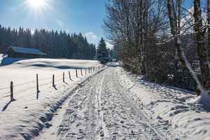 Poster Winter Way Schnee Wald Wintry Cold Weg