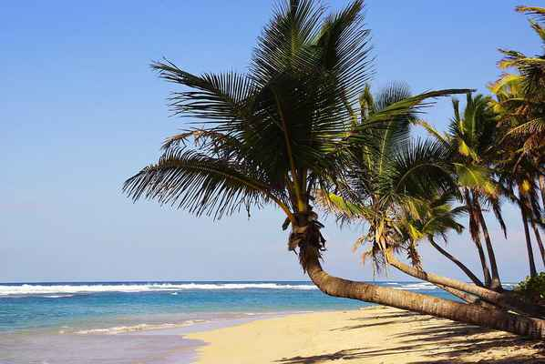 Poster Punta Cana Bavaro Strand Dominican Republic Ferien Download