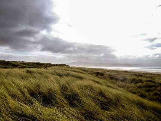 Poster Gras Wiese Irland Wolken Download